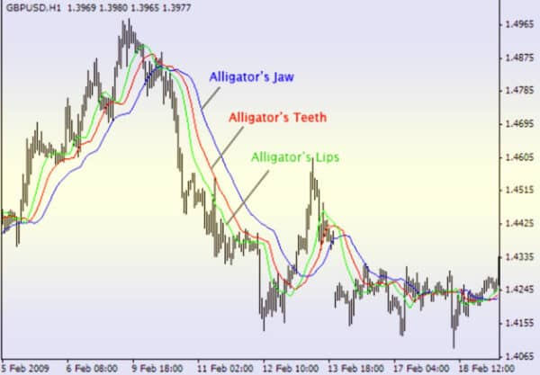 Индикатор аллигатор 1